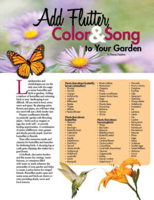 Fox content Home and Garden decorator magazine article Add Flutter Color And Song To Your Garden HGD0112