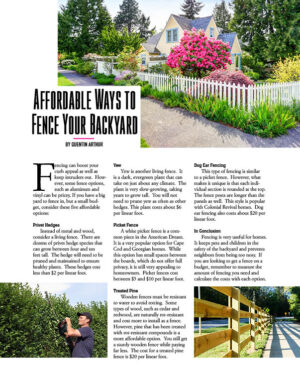 Affordable Ways To Fence Your Backyard HGD1422