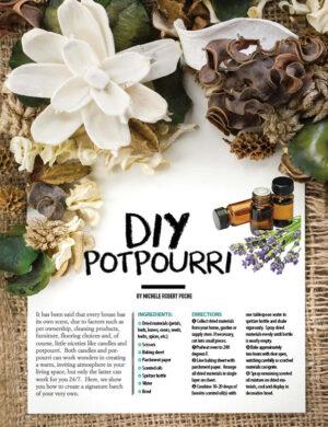 DIY Potpourri HGD0324