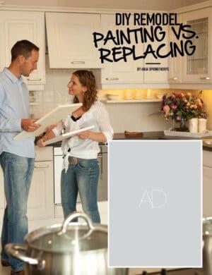 DIY Remodel Painting Vs. Replacing HGD0626