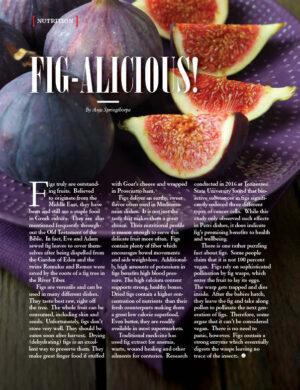 Fig-Alicious! 101 AL1110