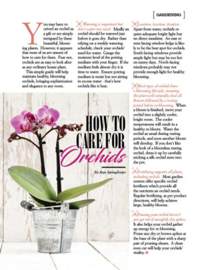 How to Care for Orchids AL0705